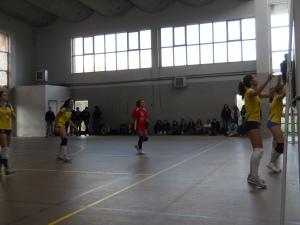 foto nomentano volley